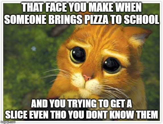 Shrek Cat | THAT FACE YOU MAKE WHEN SOMEONE BRINGS PIZZA TO SCHOOL AND YOU TRYING TO GET A SLICE EVEN THO YOU DONT KNOW THEM | image tagged in memes,shrek cat | made w/ Imgflip meme maker