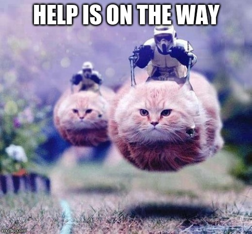 Storm Trooper Cats | HELP IS ON THE WAY | image tagged in storm trooper cats | made w/ Imgflip meme maker