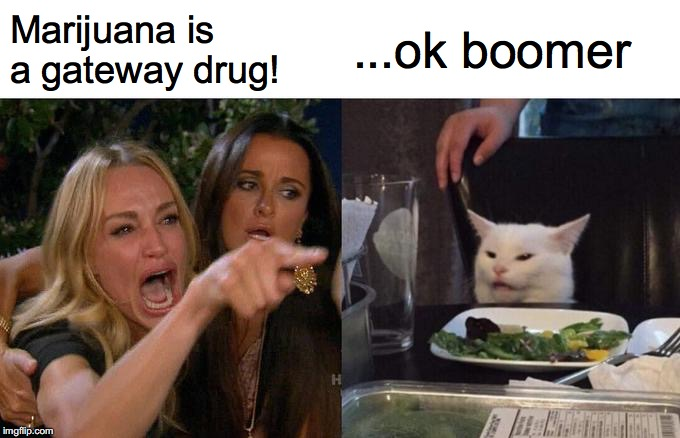 Woman Yelling At Cat Meme | Marijuana is a gateway drug! ...ok boomer | image tagged in memes,woman yelling at cat | made w/ Imgflip meme maker
