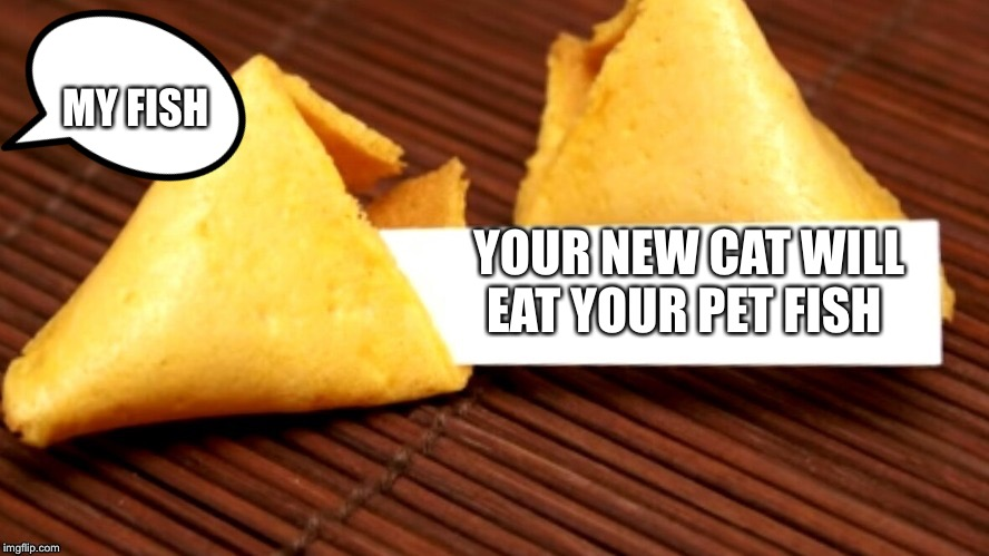 Fortune cookie fun | YOUR NEW CAT WILL EAT YOUR PET FISH MY FISH | image tagged in fortune cookie | made w/ Imgflip meme maker