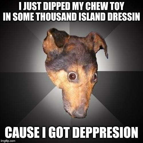 Depression Dog |  I JUST DIPPED MY CHEW TOY IN SOME THOUSAND ISLAND DRESSIN; CAUSE I GOT DEPPRESION | image tagged in memes,depression dog | made w/ Imgflip meme maker