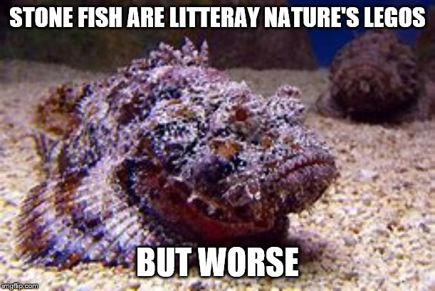 YOU DO NOT WANT TO STEP ON THIS BAREFOOTED |  STONE FISH ARE LITTERAY NATURE'S LEGOS; BUT WORSE | image tagged in barefoot,stonefish,legos,nature,worst | made w/ Imgflip meme maker