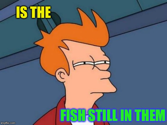 Futurama Fry Meme | IS THE FISH STILL IN THEM | image tagged in memes,futurama fry | made w/ Imgflip meme maker