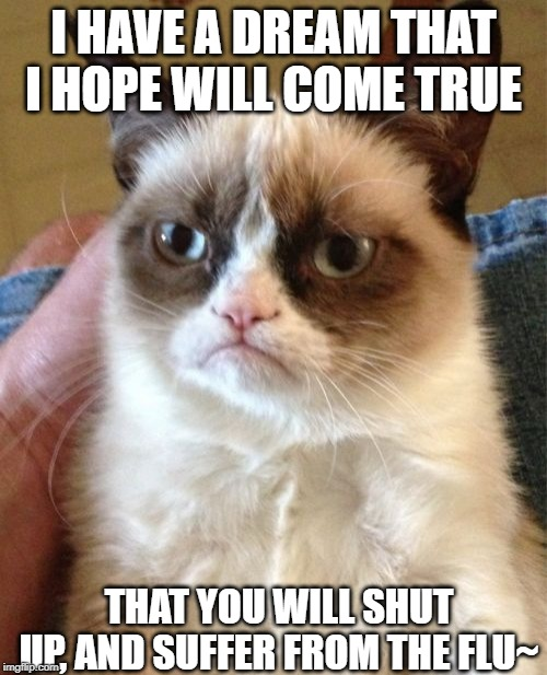 I have a dream~ |  I HAVE A DREAM THAT I HOPE WILL COME TRUE; THAT YOU WILL SHUT UP, AND SUFFER FROM THE FLU~ | image tagged in memes,grumpy cat,shut up,i have a dream,lava | made w/ Imgflip meme maker
