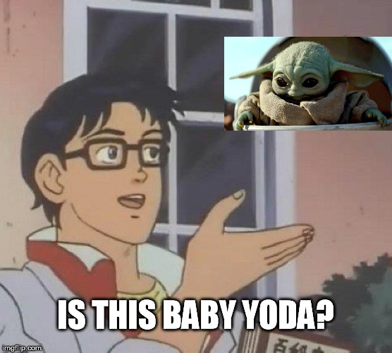 Is This A Pigeon Meme | IS THIS BABY YODA? | image tagged in memes,is this a pigeon | made w/ Imgflip meme maker