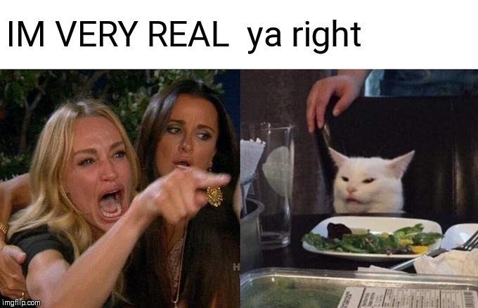 Woman Yelling At Cat Meme | IM VERY REAL ya right | image tagged in memes,woman yelling at cat | made w/ Imgflip meme maker