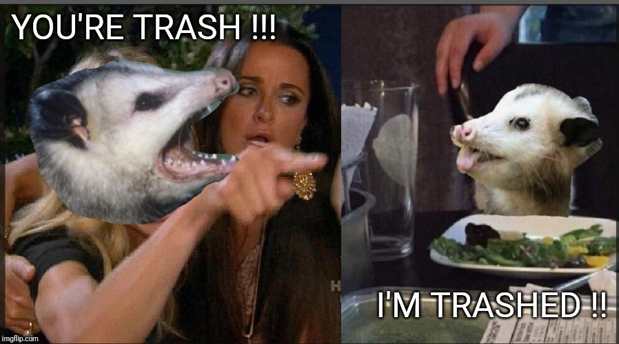 Trashed possum |  YOU'RE TRASH !!! I'M TRASHED !! | image tagged in memes,possum | made w/ Imgflip meme maker