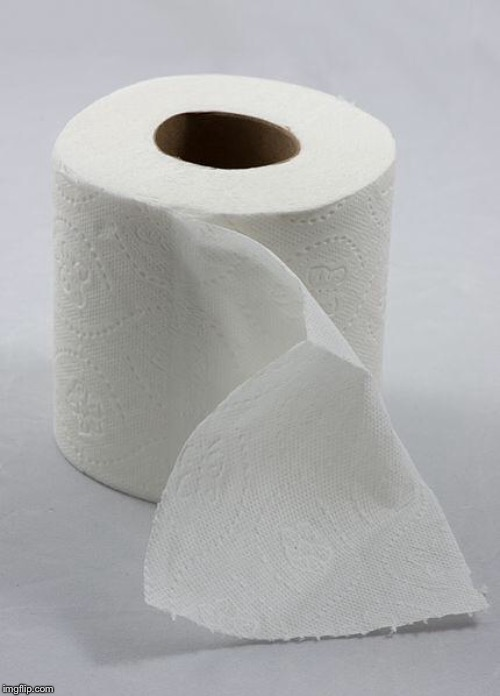 toilet paper | image tagged in toilet paper | made w/ Imgflip meme maker