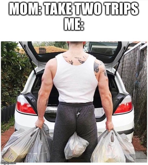 If you're a real  Man you know that there's no such thing as two trips | MOM: TAKE TWO TRIPSME: | image tagged in fun | made w/ Imgflip meme maker