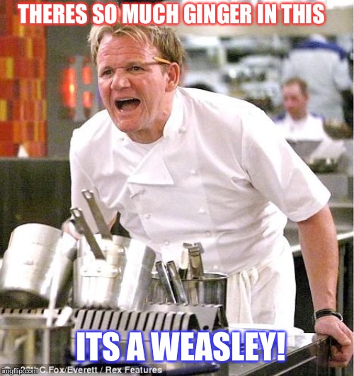 Classic Gordon Ramsay diss. |  THERES SO MUCH GINGER IN THIS; ITS A WEASLEY! | image tagged in memes,chef gordon ramsay,featured,fun,ron weasley | made w/ Imgflip meme maker
