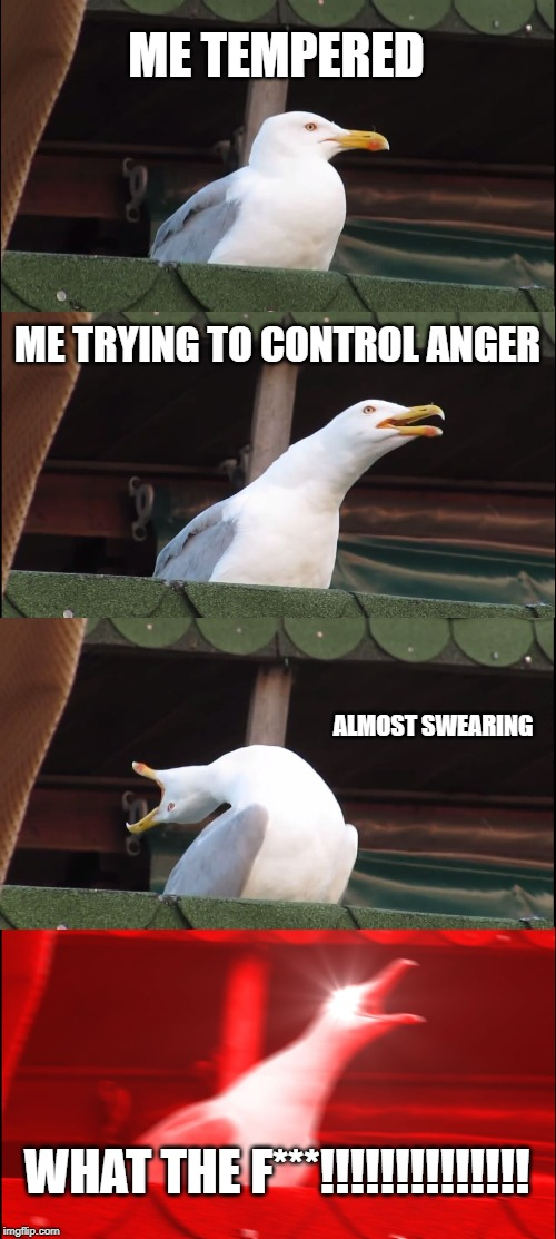 Inhaling Seagull Meme | ME TEMPERED ME TRYING TO CONTROL ANGER ALMOST SWEARING WHAT THE F***!!!!!!!!!!!!!! | image tagged in memes,inhaling seagull | made w/ Imgflip meme maker