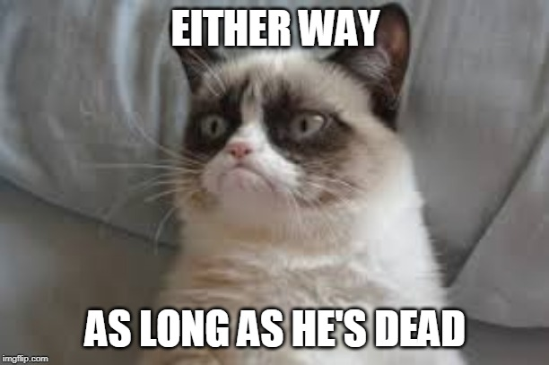 Grumpy cat | EITHER WAY AS LONG AS HE'S DEAD | image tagged in grumpy cat | made w/ Imgflip meme maker