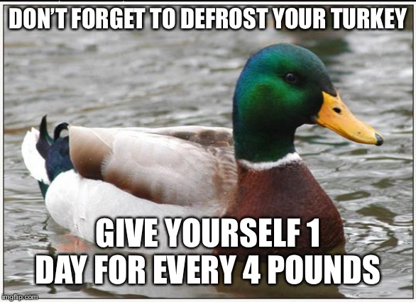 Actual Advice Mallard | DON'T FORGET TO DEFROST YOUR TURKEY GIVE YOURSELF 1 DAY FOR EVERY 4 POUNDS | image tagged in memes,actual advice mallard,AdviceAnimals | made w/ Imgflip meme maker