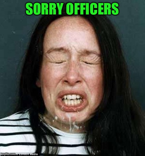 the sneeze | SORRY OFFICERS | image tagged in the sneeze | made w/ Imgflip meme maker