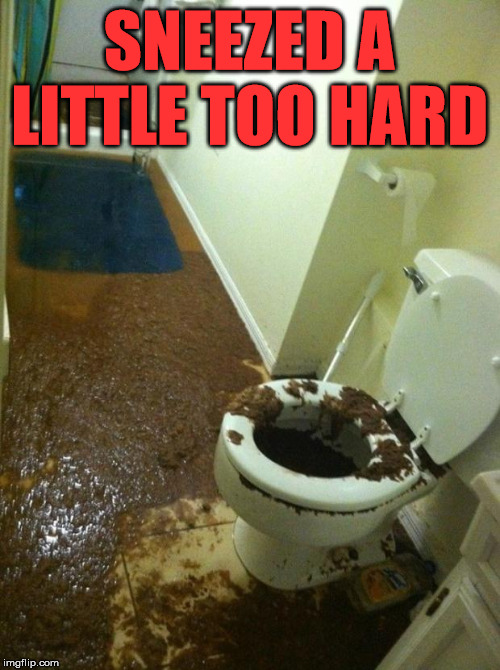 poop | SNEEZED A LITTLE TOO HARD | image tagged in poop | made w/ Imgflip meme maker