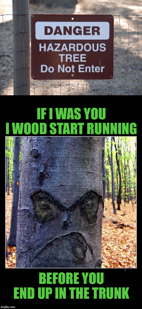 Best to leaf this place alone | IF I WAS YOU I WOOD START RUNNING BEFORE YOU END UP IN THE TRUNK | image tagged in stupid signs,nightmare on elm street,tree,puns,confused dafuq jack sparrow what,barking mad | made w/ Imgflip meme maker