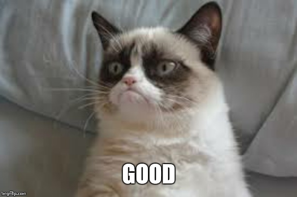 Grumpy cat | GOOD | image tagged in grumpy cat | made w/ Imgflip meme maker