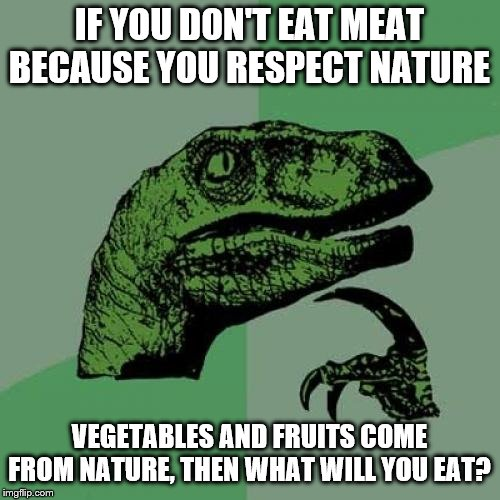 Philosoraptor Meme | IF YOU DON'T EAT MEAT BECAUSE YOU RESPECT NATURE VEGETABLES AND FRUITS COME FROM NATURE, THEN WHAT WILL YOU EAT? | image tagged in memes,philosoraptor | made w/ Imgflip meme maker