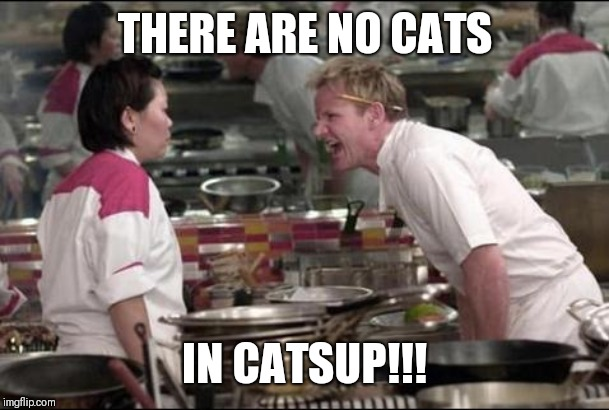 Where are the tomatoes?! | THERE ARE NO CATS IN CATSUP!!! | image tagged in memes,angry chef gordon ramsay | made w/ Imgflip meme maker
