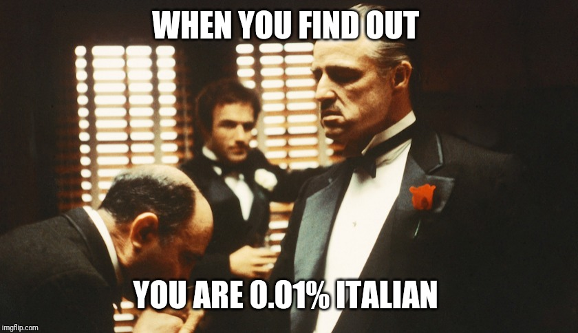 WHEN YOU FIND OUT YOU ARE 0.01% ITALIAN | image tagged in the godfather,funny memes | made w/ Imgflip meme maker