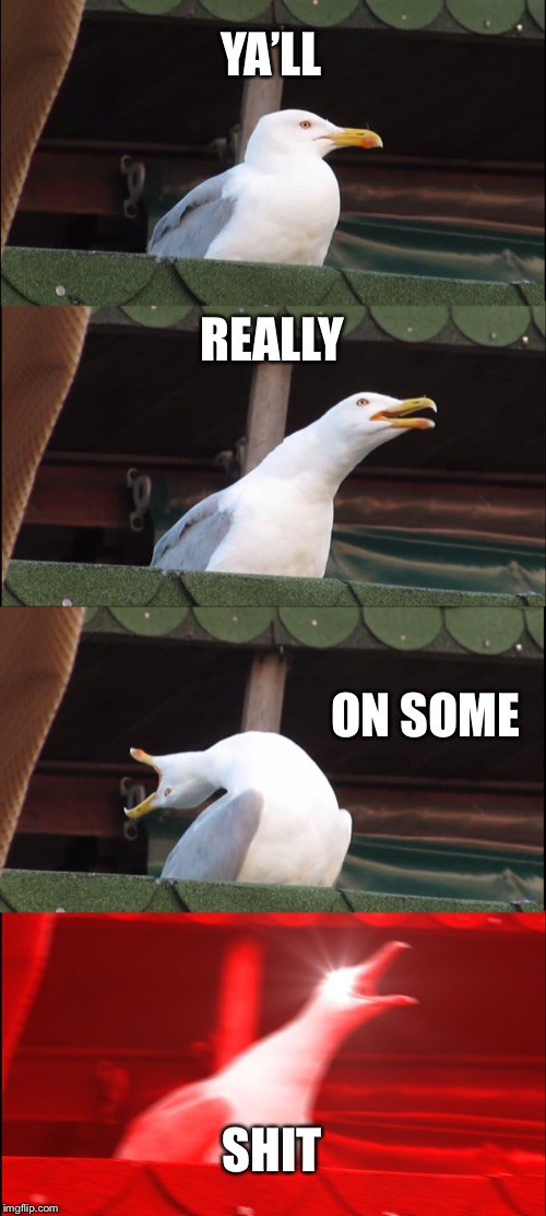Inhaling Seagull | YA'LL REALLY ON SOME SHIT | image tagged in memes,inhaling seagull | made w/ Imgflip meme maker
