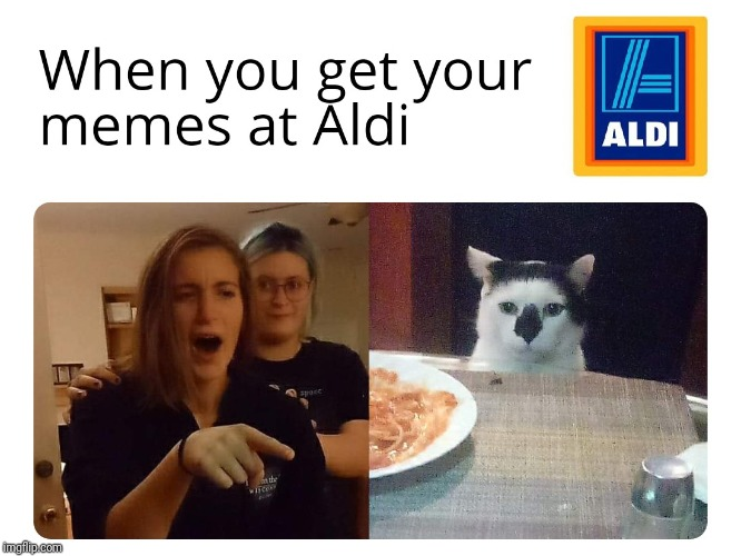 Memes at Aldi | image tagged in memes,funny,woman yelling at cat | made w/ Imgflip meme maker
