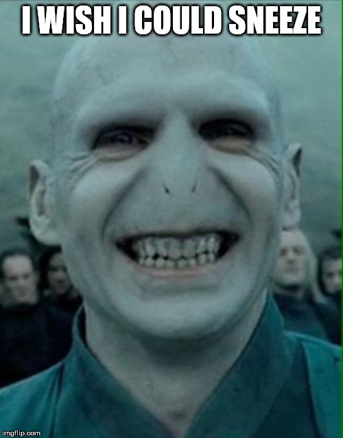 Voldemort Grin | I WISH I COULD SNEEZE | image tagged in voldemort grin | made w/ Imgflip meme maker