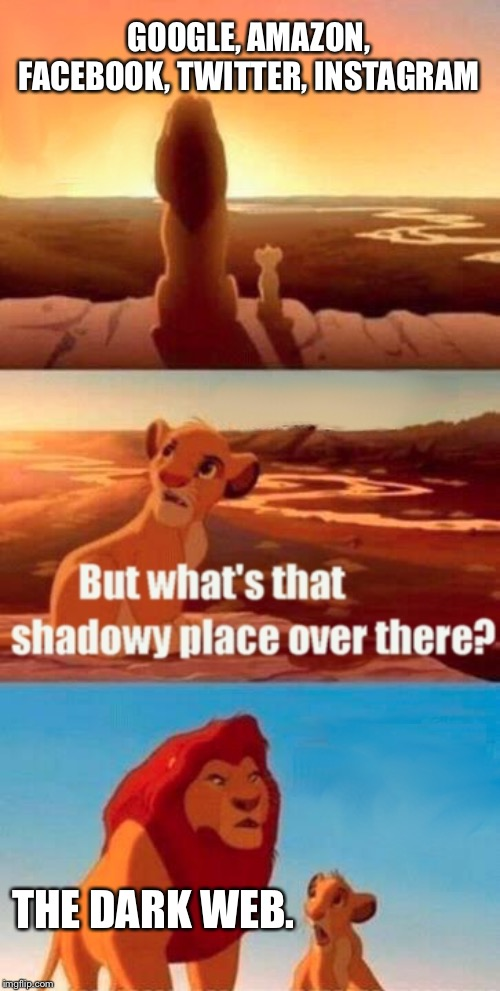 Simba Shadowy Place Meme | GOOGLE, AMAZON, FACEBOOK, TWITTER, INSTAGRAM THE DARK WEB. | image tagged in memes,simba shadowy place | made w/ Imgflip meme maker