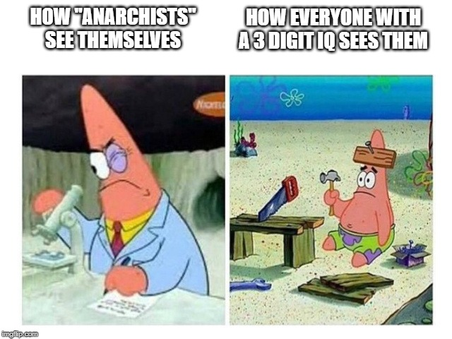"HOW ""ANARCHISTS"" SEE THEMSELVES HOW EVERYONE WITH A 3 DIGIT IQ SEES THEM 