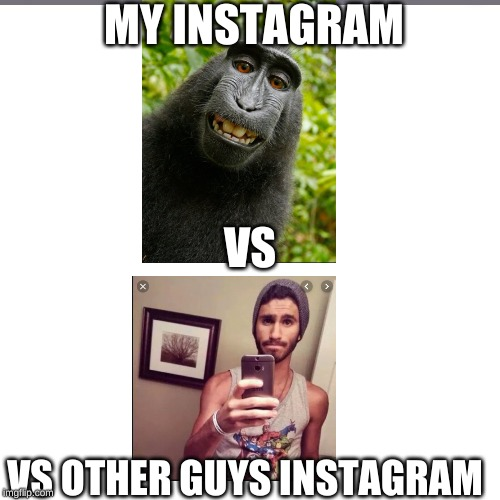 MY INSTAGRAM VS OTHER GUYS INSTAGRAM VS | image tagged in fun stuff,monkey,instagram | made w/ Imgflip meme maker