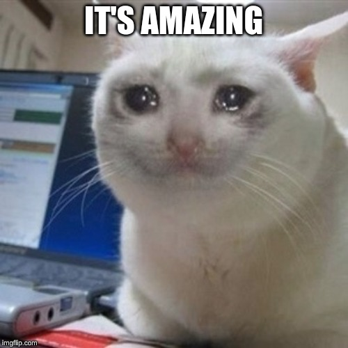 Crying cat | IT'S AMAZING | image tagged in crying cat | made w/ Imgflip meme maker