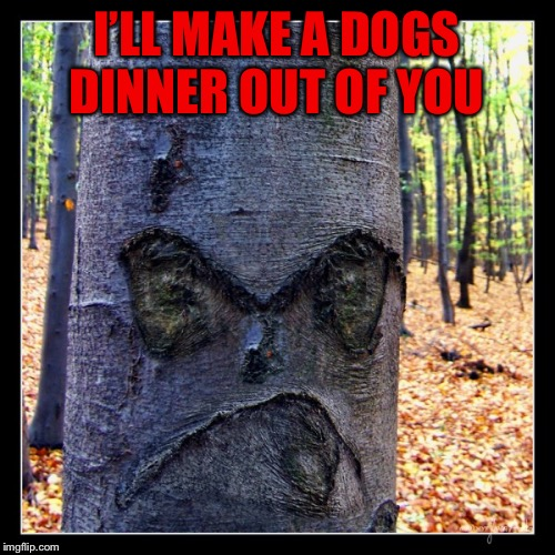 I'LL MAKE A DOGS DINNER OUT OF YOU | made w/ Imgflip meme maker