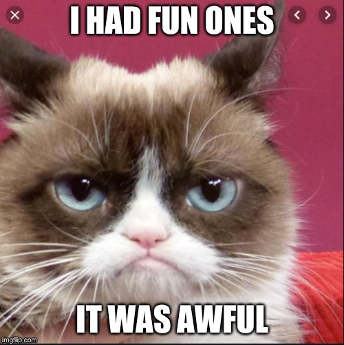I HAD FUN ONES; IT WAS AWFUL | image tagged in grumpy cat,cat,cats,funny,fun | made w/ Imgflip meme maker