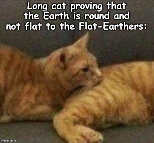 Long cat proving that the Earth is round and not flat to the Flat-Earthers: | image tagged in memes,random | made w/ Imgflip meme maker
