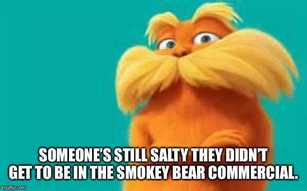 lorax | SOMEONE'S STILL SALTY THEY DIDN'T GET TO BE IN THE SMOKEY BEAR COMMERCIAL. | image tagged in lorax | made w/ Imgflip meme maker