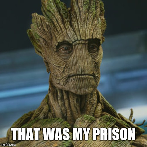I am Groot | THAT WAS MY PRISON | image tagged in i am groot | made w/ Imgflip meme maker