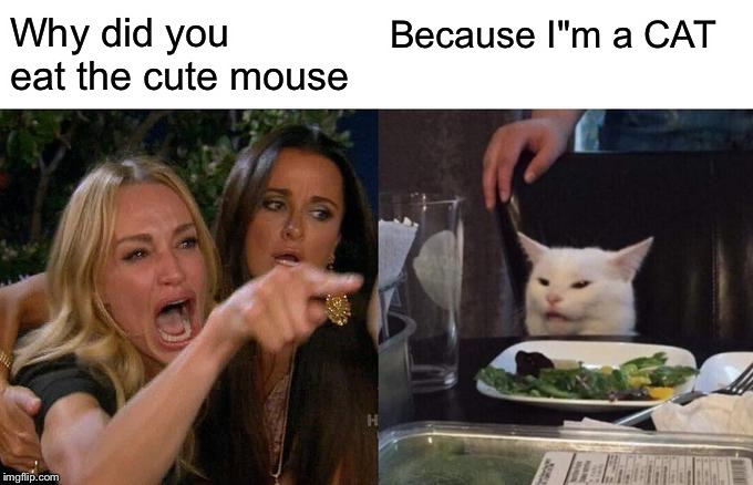 "Woman Yelling At Cat Meme | Why did you eat the cute mouse Because I""m a CAT 