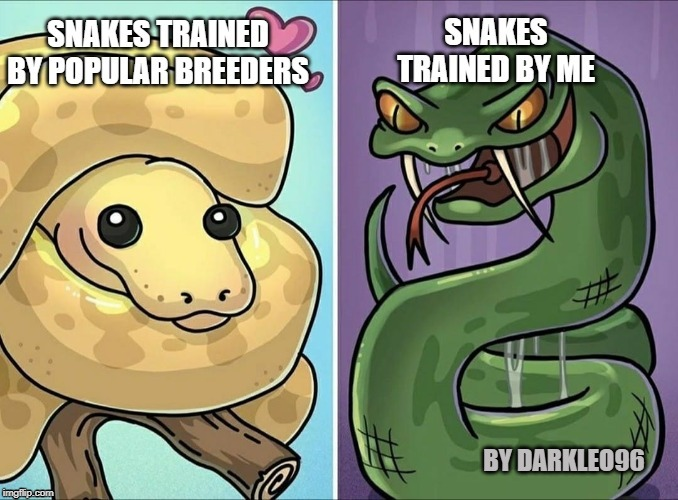 True Snake training | BY DARKLEO96 | image tagged in snakes,snake,reptile | made w/ Imgflip meme maker