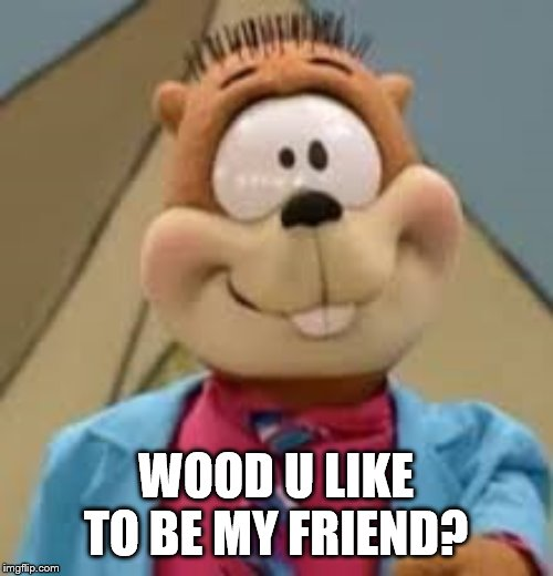 We haven't seen the last of him | WOOD U LIKE TO BE MY FRIEND? | image tagged in fuller house | made w/ Imgflip meme maker