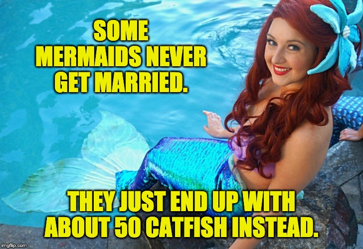 Makes sense to me. | SOME MERMAIDS NEVER GET MARRIED. THEY JUST END UP WITH ABOUT 50 CATFISH INSTEAD. | image tagged in mermaid | made w/ Imgflip meme maker