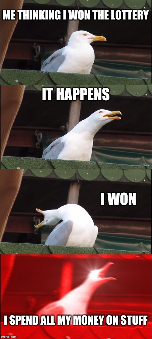 Inhaling Seagull | ME THINKING I WON THE LOTTERY IT HAPPENS I WON I SPEND ALL MY MONEY ON STUFF | image tagged in memes,inhaling seagull | made w/ Imgflip meme maker