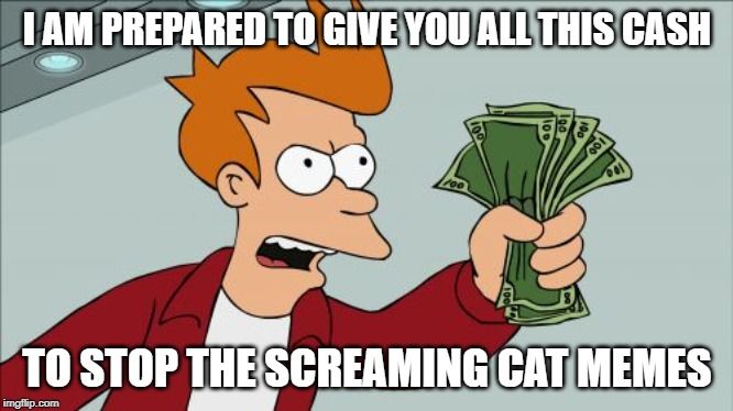 Shut Up And Take My Money Fry |  I AM PREPARED TO GIVE YOU ALL THIS CASH; TO STOP THE SCREAMING CAT MEMES | image tagged in memes,shut up and take my money fry | made w/ Imgflip meme maker