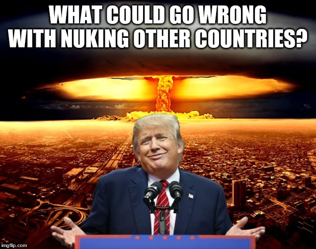 WHAT COULD GO WRONG WITH NUKING OTHER COUNTRIES? | image tagged in trump nuke policy | made w/ Imgflip meme maker