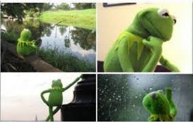 Waiting Kermit Blank Template - Imgflip