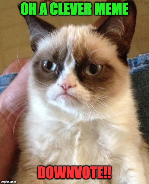 Grumpy Cat Meme | OH A CLEVER MEME DOWNVOTE!! | image tagged in memes,grumpy cat | made w/ Imgflip meme maker