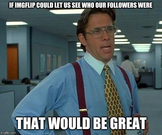 someone probs did this but eh. | IF IMGFLIP COULD LET US SEE WHO OUR FOLLOWERS WERE THAT WOULD BE GREAT | image tagged in memes,that would be great | made w/ Imgflip meme maker