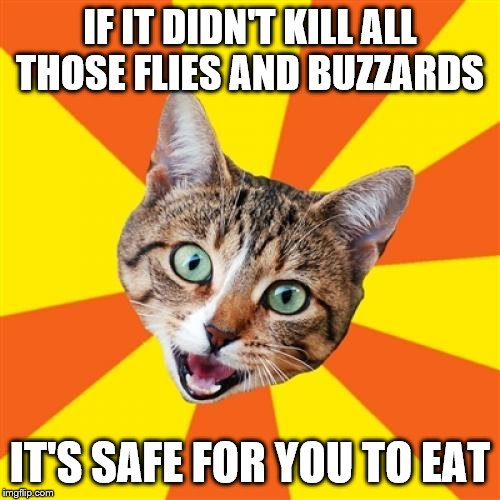Bad Advice Cat |  IF IT DIDN'T KILL ALL THOSE FLIES AND BUZZARDS; IT'S SAFE FOR YOU TO EAT | image tagged in memes,bad advice cat | made w/ Imgflip meme maker