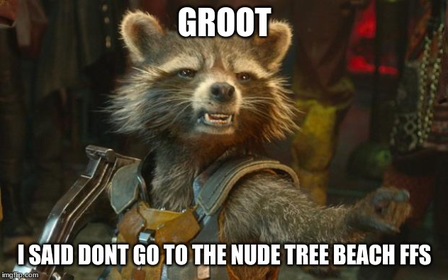 Rocket Raccoon | GROOT I SAID DONT GO TO THE NUDE TREE BEACH FFS | image tagged in rocket raccoon | made w/ Imgflip meme maker
