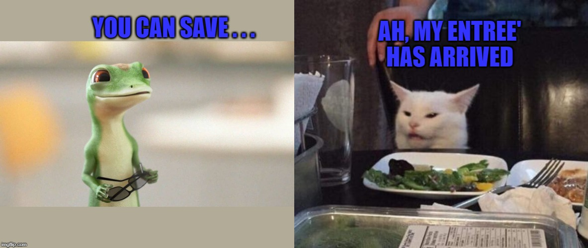 YOU CAN SAVE . . . AH, MY ENTREE' HAS ARRIVED | image tagged in geico gecko,salad cat,memes,funny | made w/ Imgflip meme maker