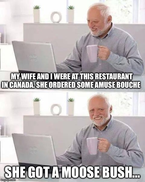 They could at least have shaved it first... | MY WIFE AND I WERE AT THIS RESTAURANT IN CANADA. SHE ORDERED SOME AMUSE BOUCHE SHE GOT A MOOSE BUSH... | image tagged in memes,hide the pain harold | made w/ Imgflip meme maker